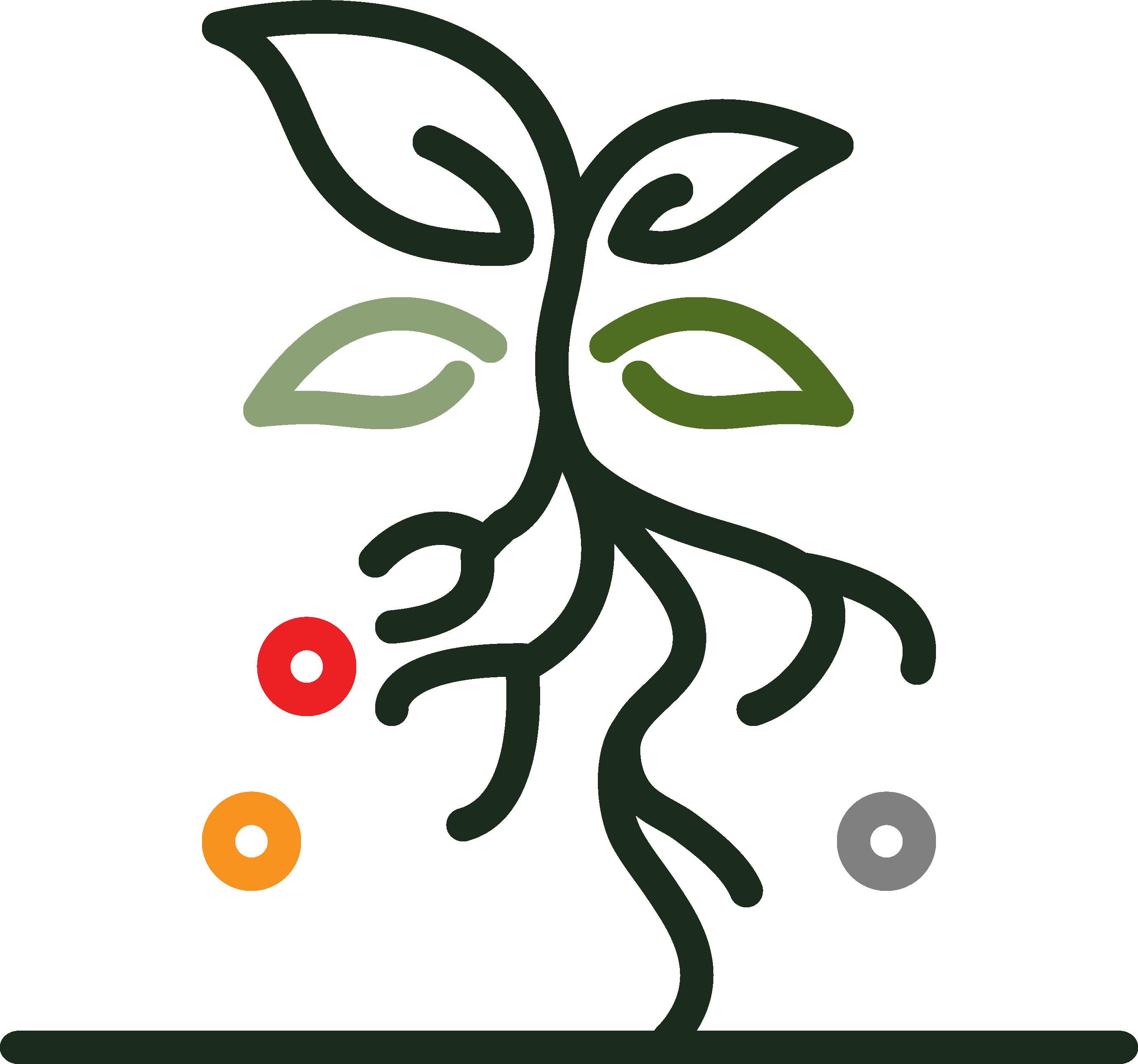 CommunityCoins.org